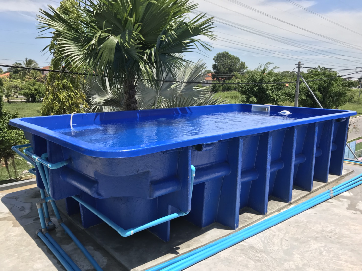 Pool World KoratAbove Ground Pools - Pool World Korat